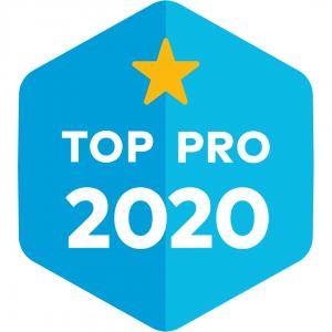 Thumbtack Professional 2020 Badge